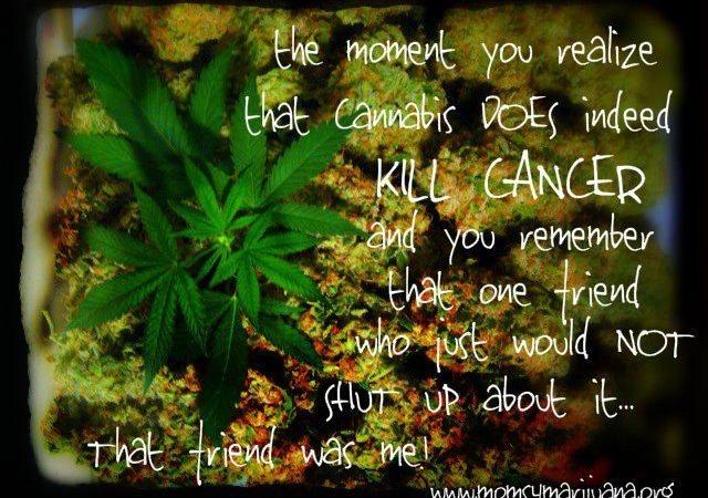 The Moment you Realize Cannabis Does Indeed Kill Cancer…