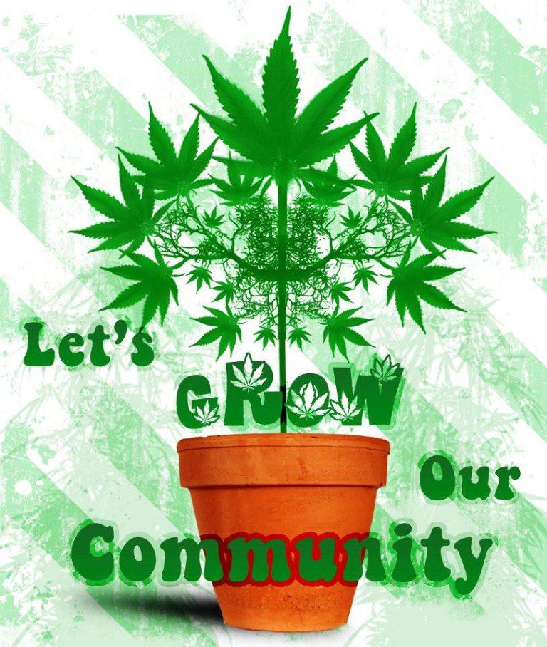cannabis community grow