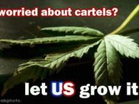 worried about drug cartels pot meme