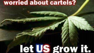 worried about drug cartels pot meme