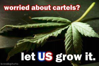 Worried about cartels? Let US grow it!