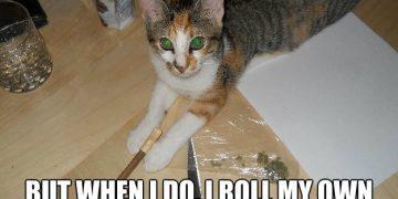 always roll my own blunt