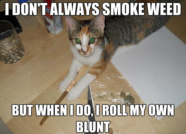 I Don't Always Smoke Weed…But When I Do I Roll My Own Blunt