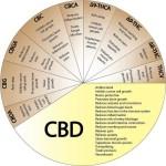 cannabinoids Theraputic Benefits
