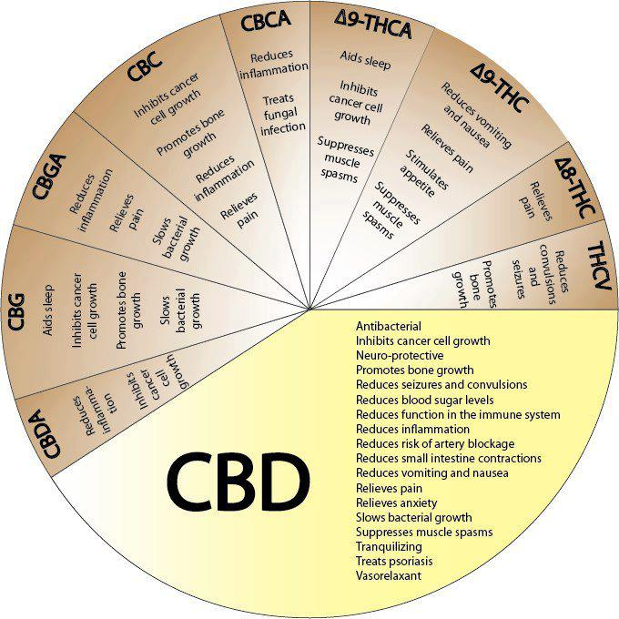 cannabinoids Theraputic Benefits