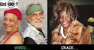Weed Vs Crack ccheech chong whitney