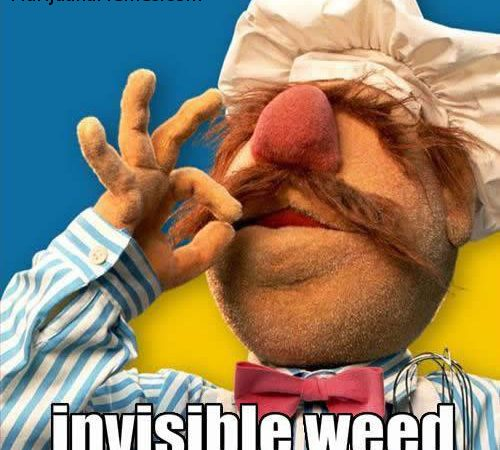 Chef Smoking Invisible Weed