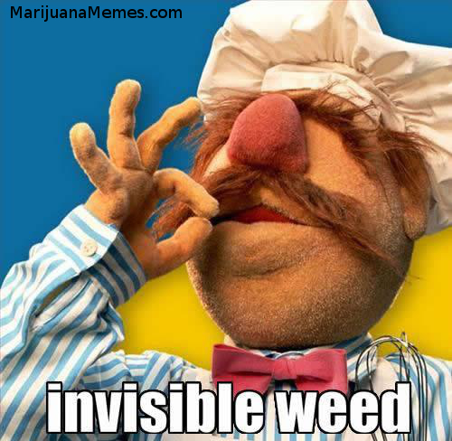 invisible weed smoking swedish chef