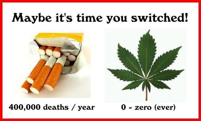 Tobacco Vs Marijuana Deaths Per Year