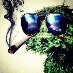 cookie monster joint smoking