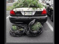 cops stelaing weed