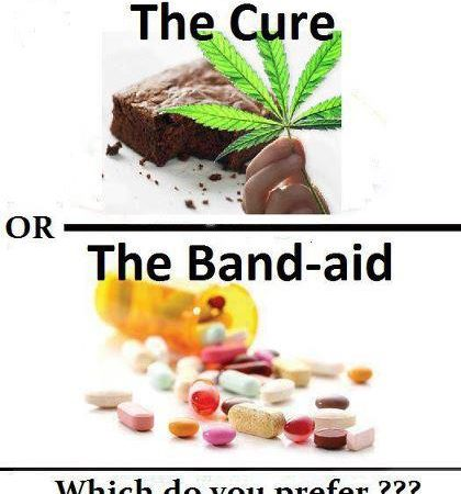 The Cure Or The Band Aid?