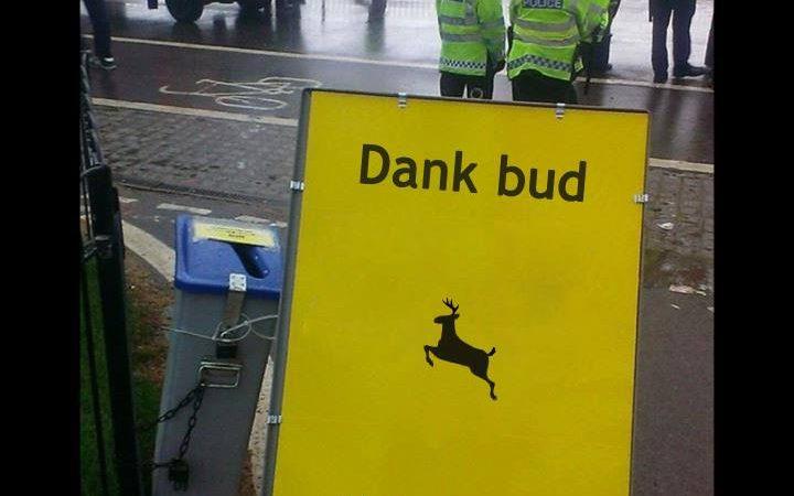 London 420 'dank this way' sign