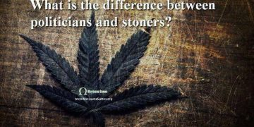 weed smoekrs politicians
