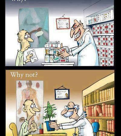 Why all the chemical pills doctor? Why not cannabis?