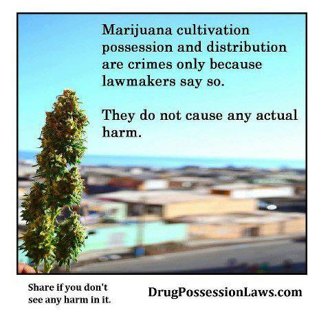 Marijuana Cultivation, Possesion and Distribution are crimes only because…