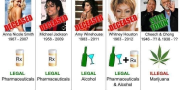 celebrity drug death meme