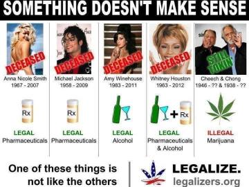 celebrity drug death meme