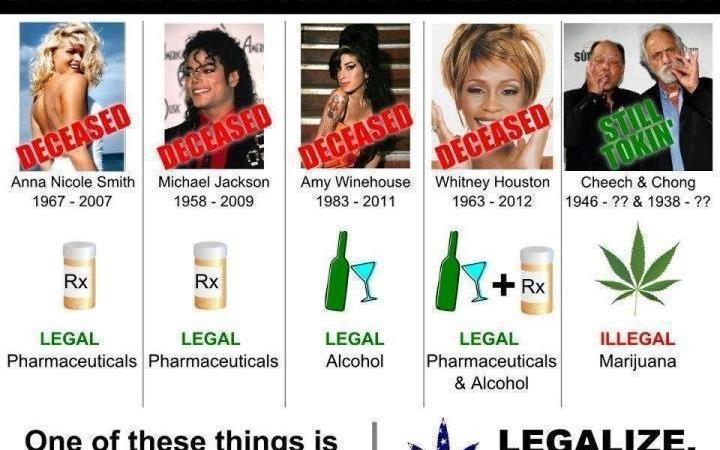 It's true that drugs kill, but not cannabis