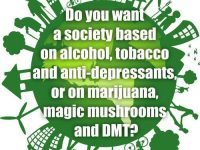 society drugs dmt magic mushrooms marijuana