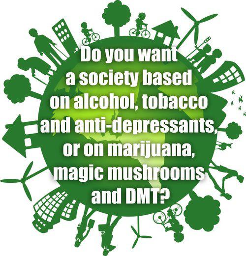 society drugs dmt magic mushrooms marijuana