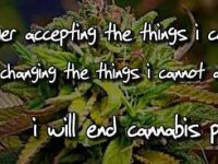 war on drugs cannabis prohibition uk