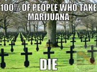 marijuana smoekers die