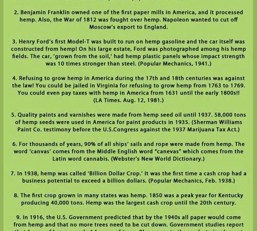 10 Eye Opening Facts about Hemp