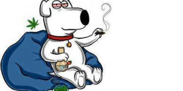 Family Guy Brian Smoking A Joint