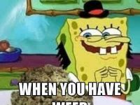 You know that feeling you get when you have weed, well this is how you look spongebob