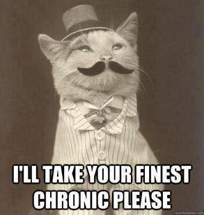 finest chronic Aristocat meme