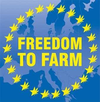 Freedom To Farm