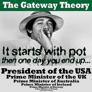 gateway theory drugs