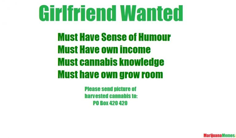 Girlfriend Wanted: Must be a stoner