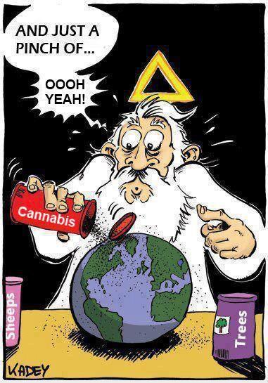 gods creations cannabis