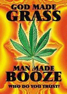 man made booze god grass