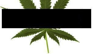patent 6630507 marijuana meme