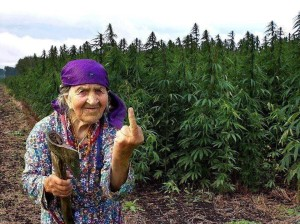 funny granny pensioner flipping bird pic