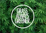 Grass is always greener weed meme