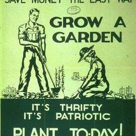 gyo grow your own save money