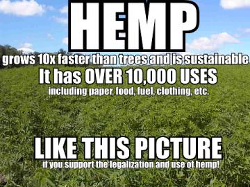 Hemp has over 10,000 uses meme