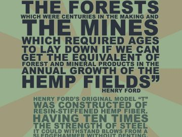 Hemp instead of forests meme