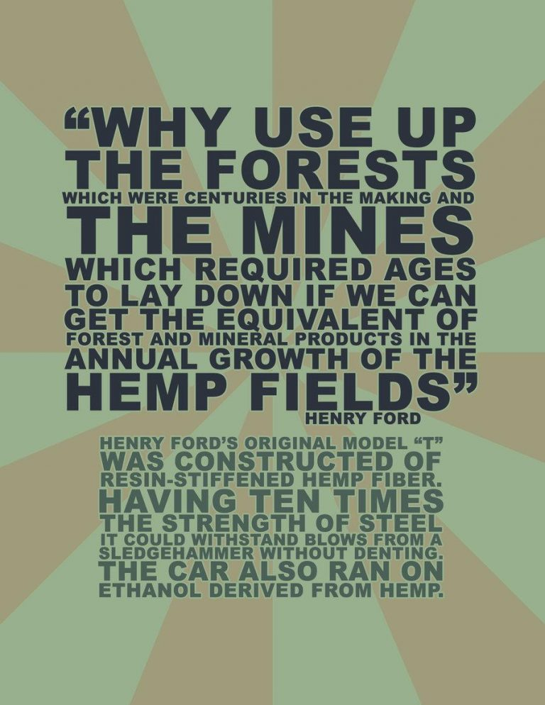 Hemp instead of forests meme