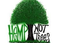hemp not trees meme