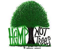 hemp not trees meme