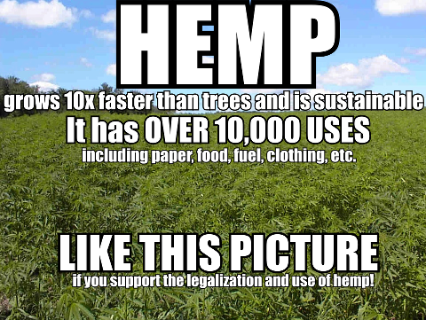 Hemp has over 10,000 uses meme
