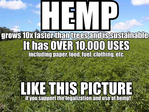 Hemp has over 10,000 uses!