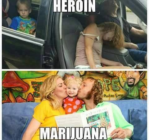 Heroin V Weed
