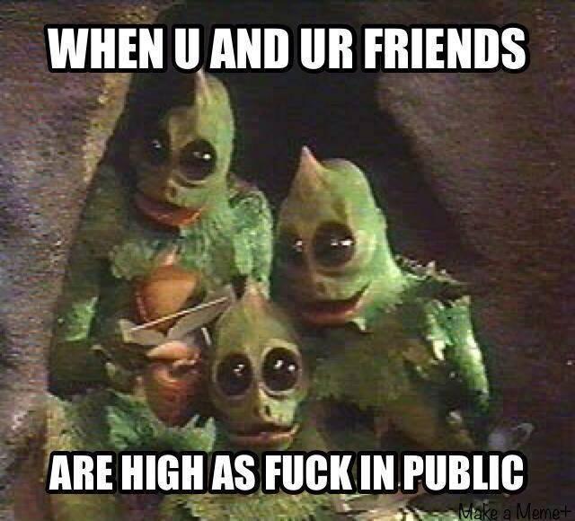 High In Public friends