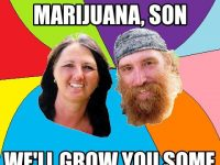 never buy marijuana grow